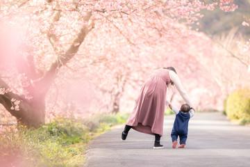 Foto op Textielframe Kersenbloesem 桜と親子の後ろ姿