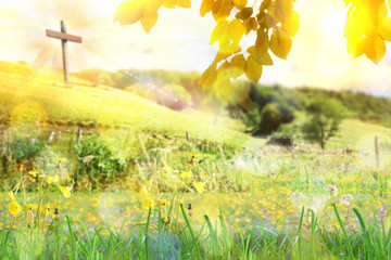 Self adhesive Wall Murals Yellow Nature with leaves and plants with cross on background hill