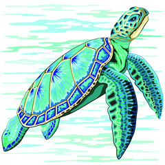 Spoed Fotobehang Draw Sea Turtle Turquoise Oceanlife Vector Art