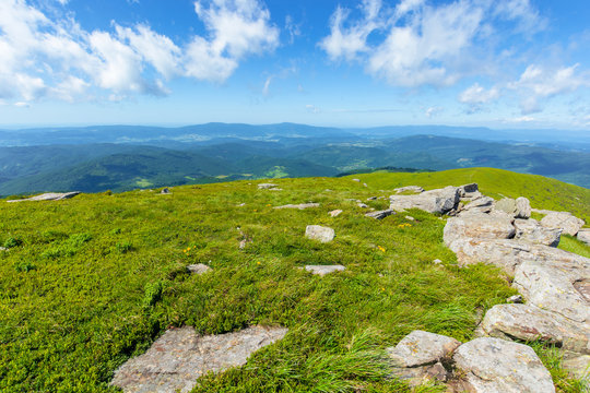 rocks on the alpine meadow. wonderful summer landscape of runa mountain. rural valley in the distance. sunny weather with fluffy clouds on the blue sky