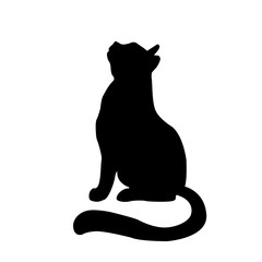 Cat picture. Vector illustration