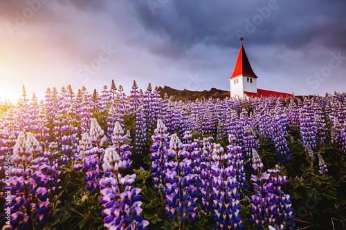 Wall mural Great view of Vikurkirkja christian church. Location place Vik i Myrdal village, Iceland, Europe.