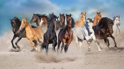 Wall Mural - Horse herd run free on desert dust against storm sky
