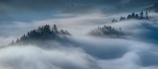 Obraz Foggy sunrise Pieniny - fototapety do salonu