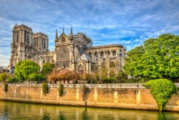 Notre Dame de Paris Cathedral After The Fire on 15 April 2019 Fototapete
