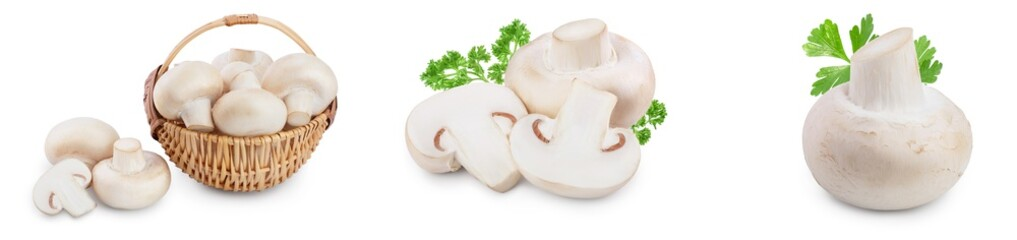 Fresh mushrooms champignon isolated on white background with clipping path and full depth of field. Set or collection