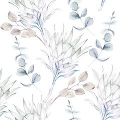 Watercolor seamless pattern. Vintage print with protea and eucalyptus branches. Hand drawn illustration