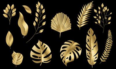 Vector leaves gold set Design banner Spring background. Vector illustration template.