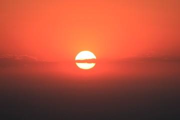Fotorollo Koralle My lovely sun.