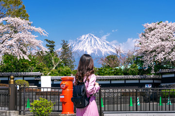 Wall Mural - Tourist looking at Fuji mountain and cherry blossom in spring, Fujinomiya in Japan.