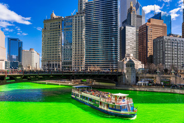 Chicago building and cityscape on Saint Patrick's day around Chicago river walk with green color dyeing river in Chicago Downtown, illinois, USA, crowned irish and american people are celebrating.