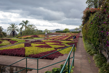Funchal, Madeira, Portugal - April 23, 2018: Tropical Botanical Garden in Funchal on Madeira island, Portugal Fototapete