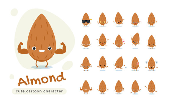 The Cute Brown Almond. Isolated Vector Illustration