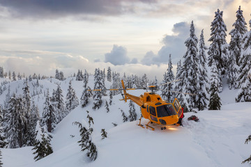 Garden Poster Helicopter North Vancouver, British Columbia, Canada. North Shore Search and Rescue are rescuing a man skier in the backcountry of Seymour Mountain with a helicopter in winter during sunset.