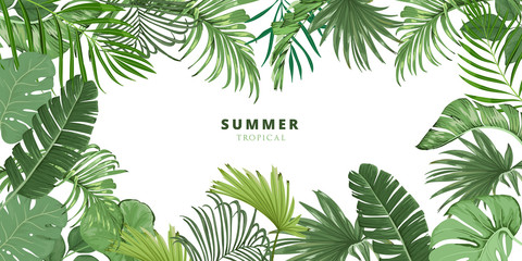 summer tropical leaf frame, Tropical palm leaves background wallpaper, tropical leaves isolated on white background. Illustration for design wedding invitations, greeting cards, postcards.