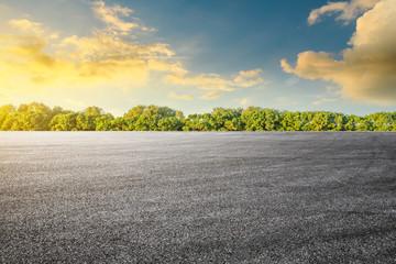 Empty asphalt road and woods background landscape