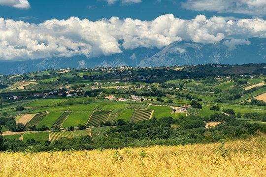 Rural landscape near Vasto, Abruzzo