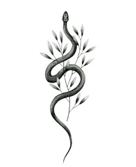 snake and plant pencil drawing, vintage style graphic black and white