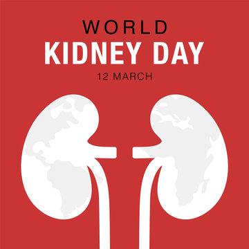 World Kidney Day, concept healthcare banner. Abstract kidney illustration. Stock vector design.