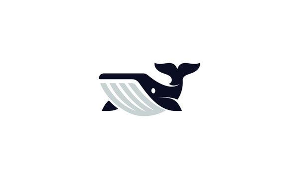 Creative whale logo symbol vector illustration