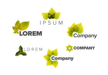Logo Layout Set with Nature Leaves Elements