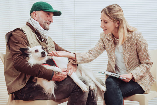 Pet therapy dog visiting senior man with psychologist. Alternative therapy concept.