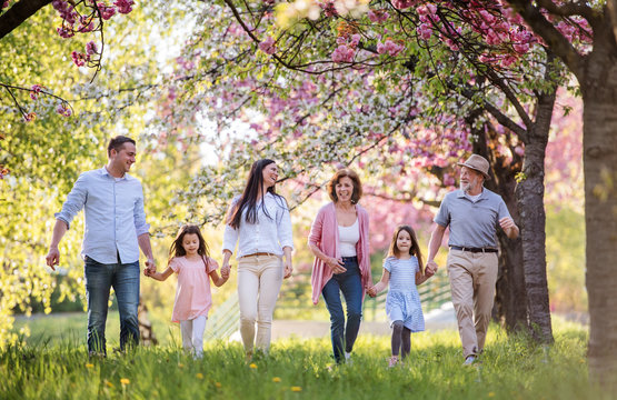 Three generation family walking outside in spring nature.