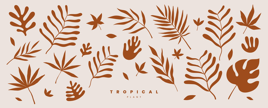 Set of exotic palm leaves of various shapes and sizes vector illustration on a light background. Tropical plants. Terracotta color plant collection in flat style. Elements for ecological design.