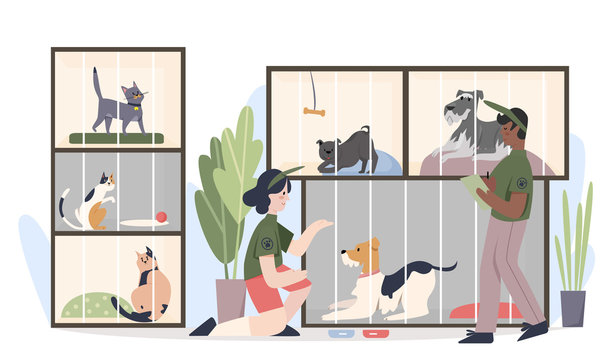 Animal shelter with pets in cages. Man and woman volunteers feeding animals cartoon flat vector illustration