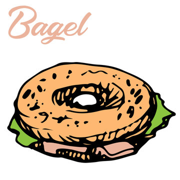 Vector illustration of fresh bagel sandwich with salad and lettering in color ink