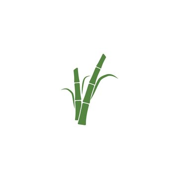 Sugar cane plant logo