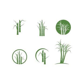 Sugar cane tree logo