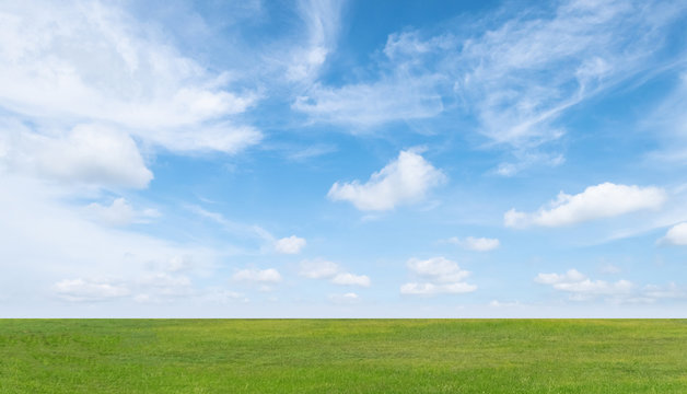 Green grass field and blue sky with white clouds. Beautiful landscape background.