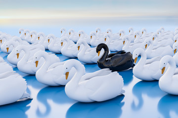 3d render: Black swan event - term for a very seldom event with a major effect often resulting in a stock market crash. One black swan within a swarm of white swans.
