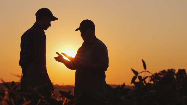 A farmer extends his hand for a handshake to a young worker. Standing on a field at sunset - agribusiness concept