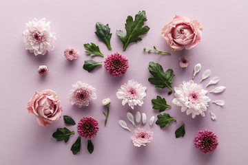 Keuken foto achterwand Roses top view of blooming spring Chrysanthemums and roses with leaves and petals on violet background