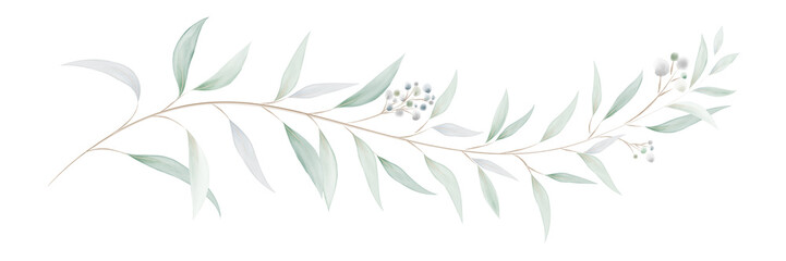 Obraz Watercolor eucalyptus leaves and branches - fototapety do salonu