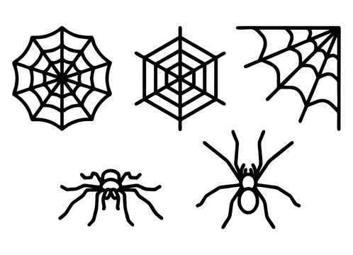 Spiders and spider web set icons isolated on white background. Vector illustration