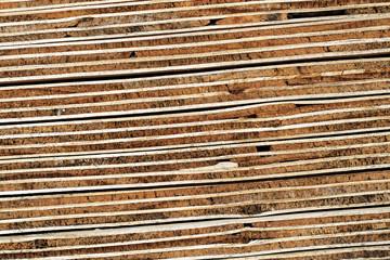 Sperrholz-Schichtung: Querschnitt 7-lagiger gestapelter Sperrholzplatten - Makroaufnahme