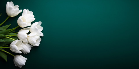 Obraz White tulips on green background top view. Happy spring Holidays. Valentine's day. Birthday. Women's day. Easter. Flower wedding card, invitation, banner - fototapety do salonu