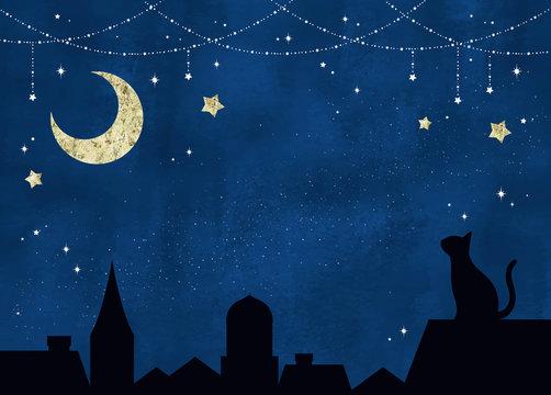 星空と月と黒猫