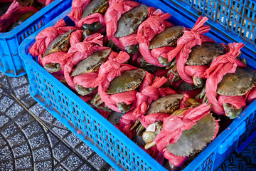 Crabs in blue box at market