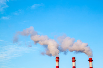 Obraz Smoking industrial stacks in a thermal power plant emit polluted air into the atmosphere in the blue sky - fototapety do salonu