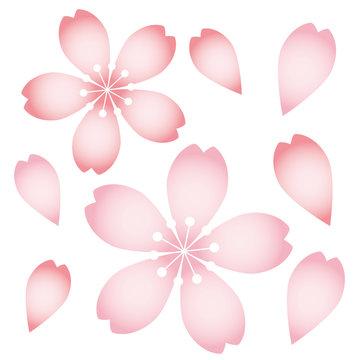 桜アイコン07