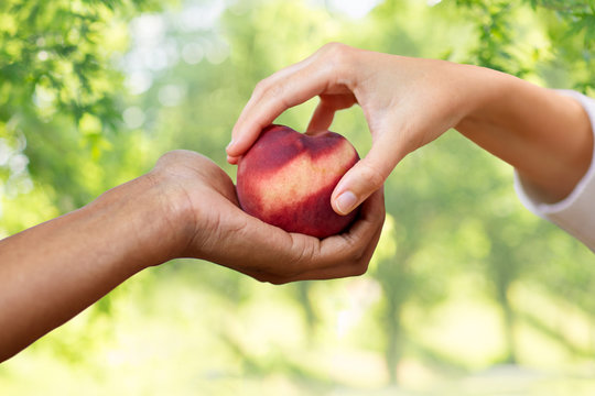 food, fruit and healthy eating concept - multiracial couple hands with peach over green natural background