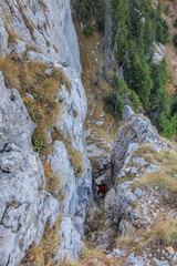 Wall Mural - climber on mountain