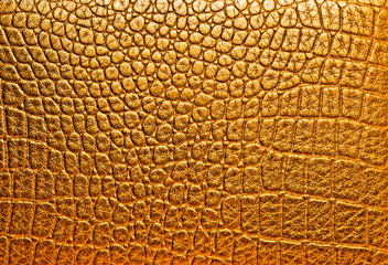 Wall Mural - Texture of crocodile skin, golden color.