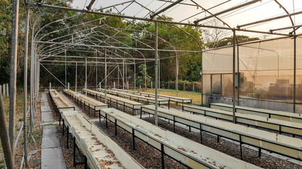 Derelict hydroponic farm.