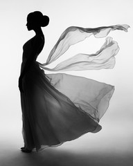 Foto op Plexiglas womenART Silhouette elegant woman in blowing dress