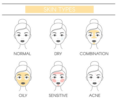 Basic skin types normal, dry, combination, oily, sensitive and acne. Line vector elements on a white background.